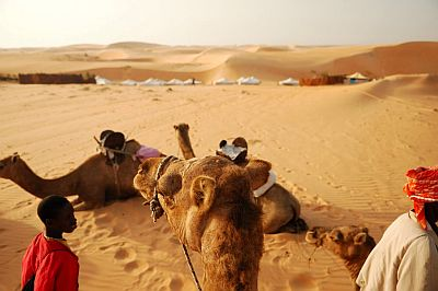 Lompoul Desert