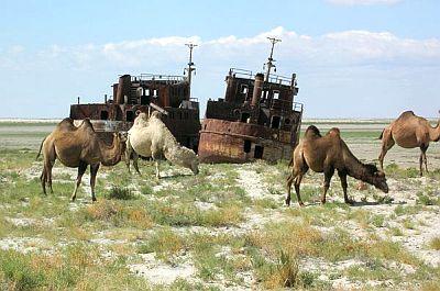 Lake Aral