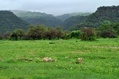 Dhofar mountains