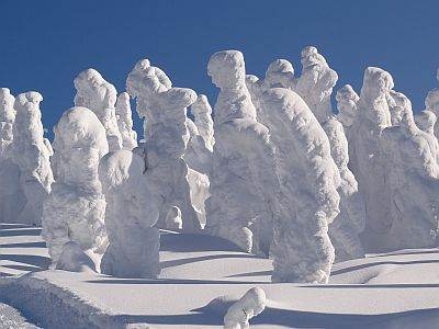 Monsters of snow on Mount Zao